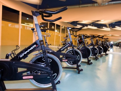 Bereich Fitness & Groupfitness