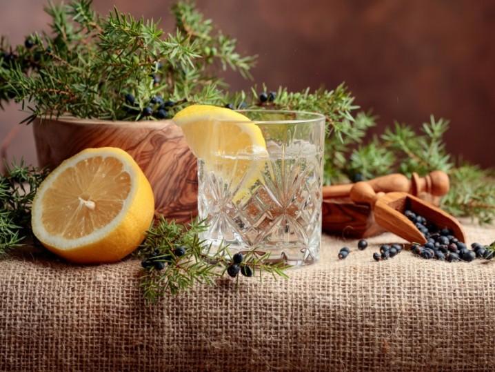 Gin Tasting bei München