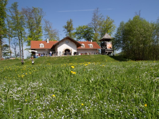 Freie Trauung Location München